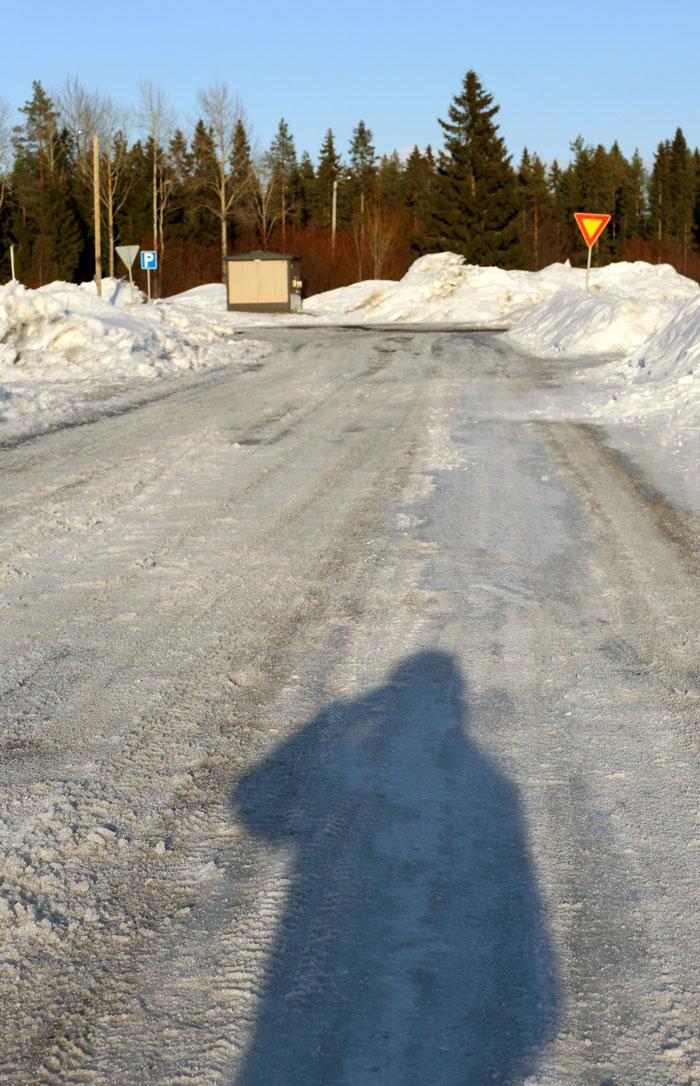 talvivielä_2